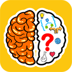 com.braintest.trickytest.game.puzzle